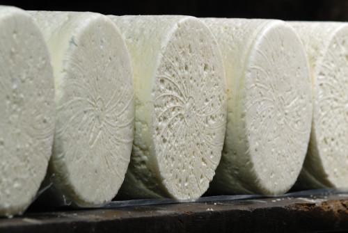 historia queso roquefort